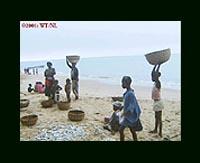 Lungui Beach